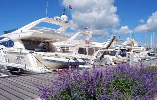 Punat kikötője, sok bérelhető hajóval