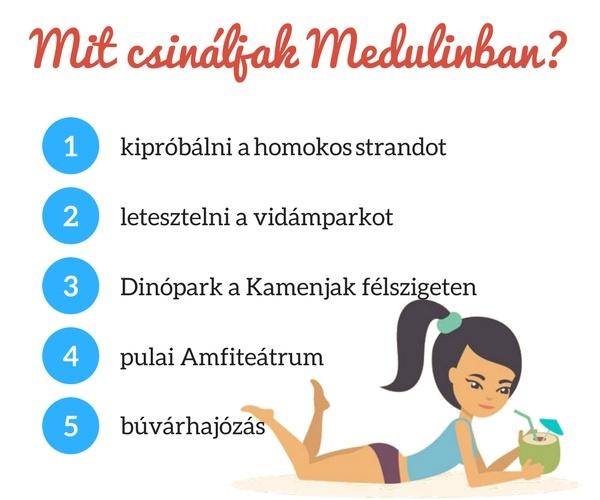 Medulin programok