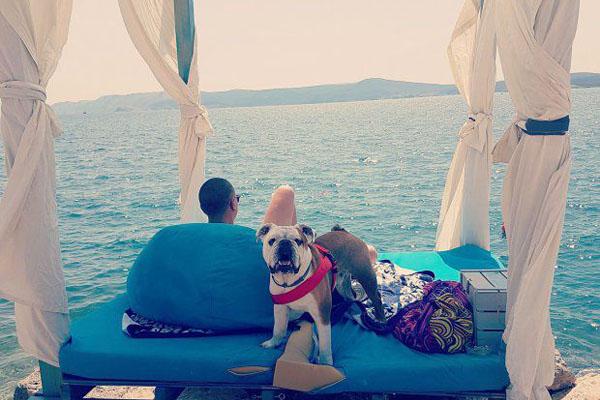 egységes szabadság kutyával horvátország